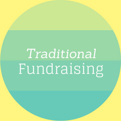 Software need: traditional fundraising