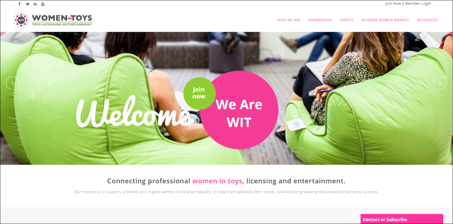 Women in Toys''s website is a strong example of a bright, engaging nonprofit website.